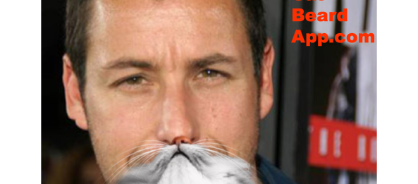 celebrity cat beards | The Official Cat Beard App | Page 3
